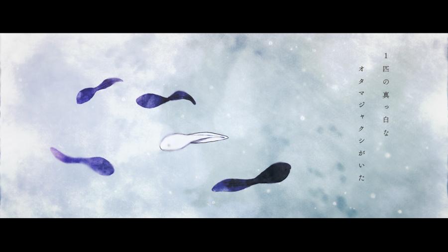 バンドハラスメント『ゼロショウウオ』 MusicVideo